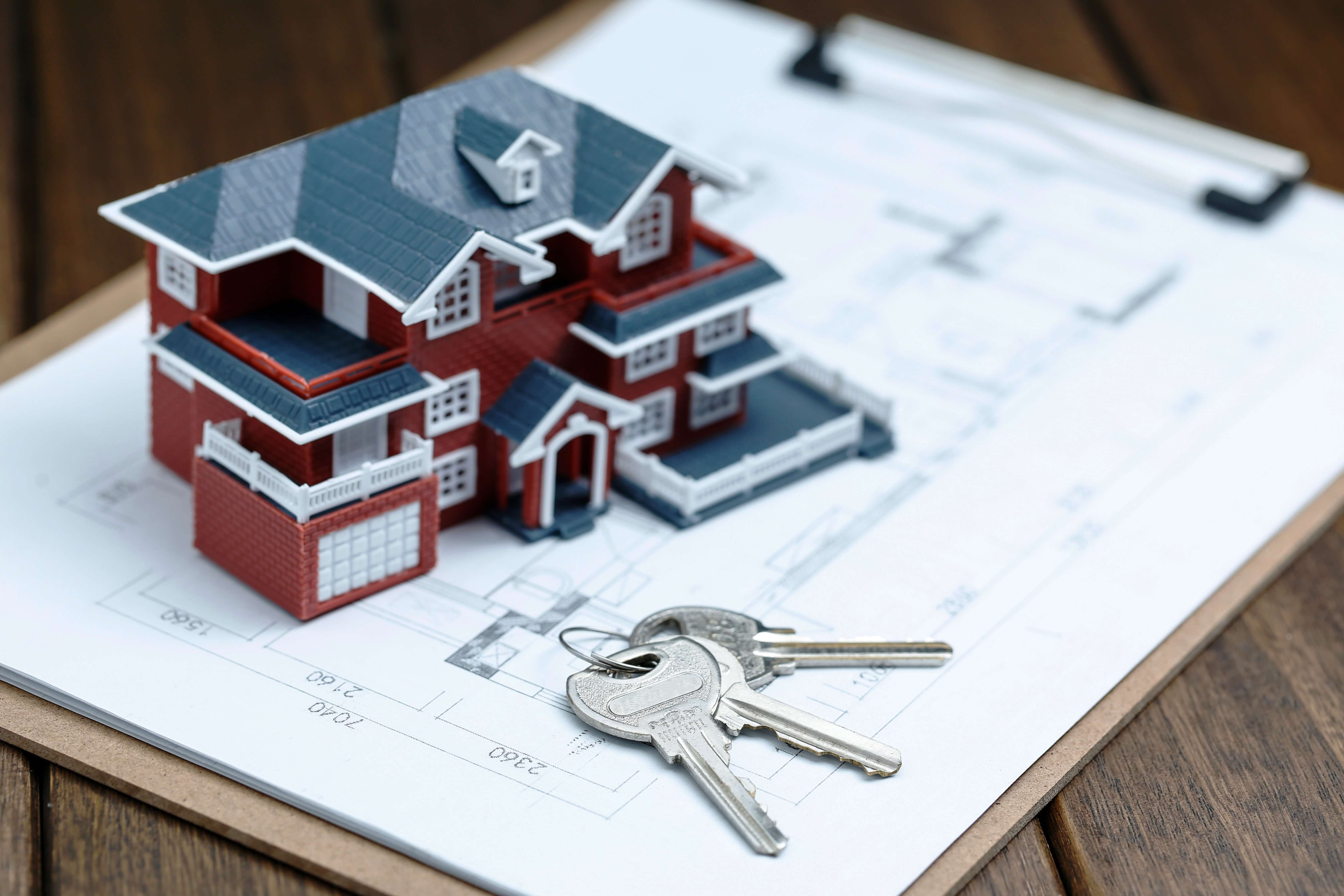 Title Verification of Immovable Property