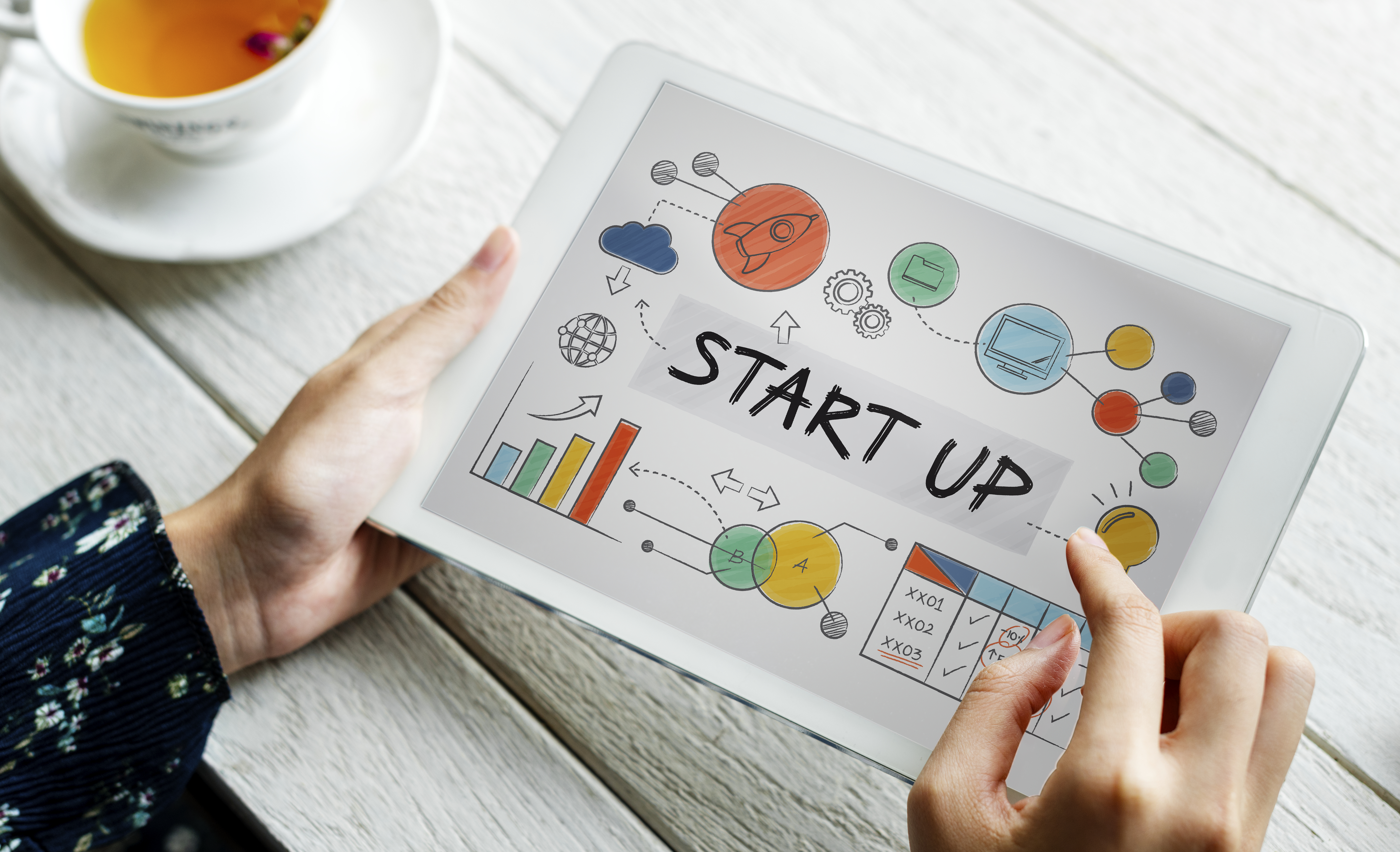 Startup under the Government Programme